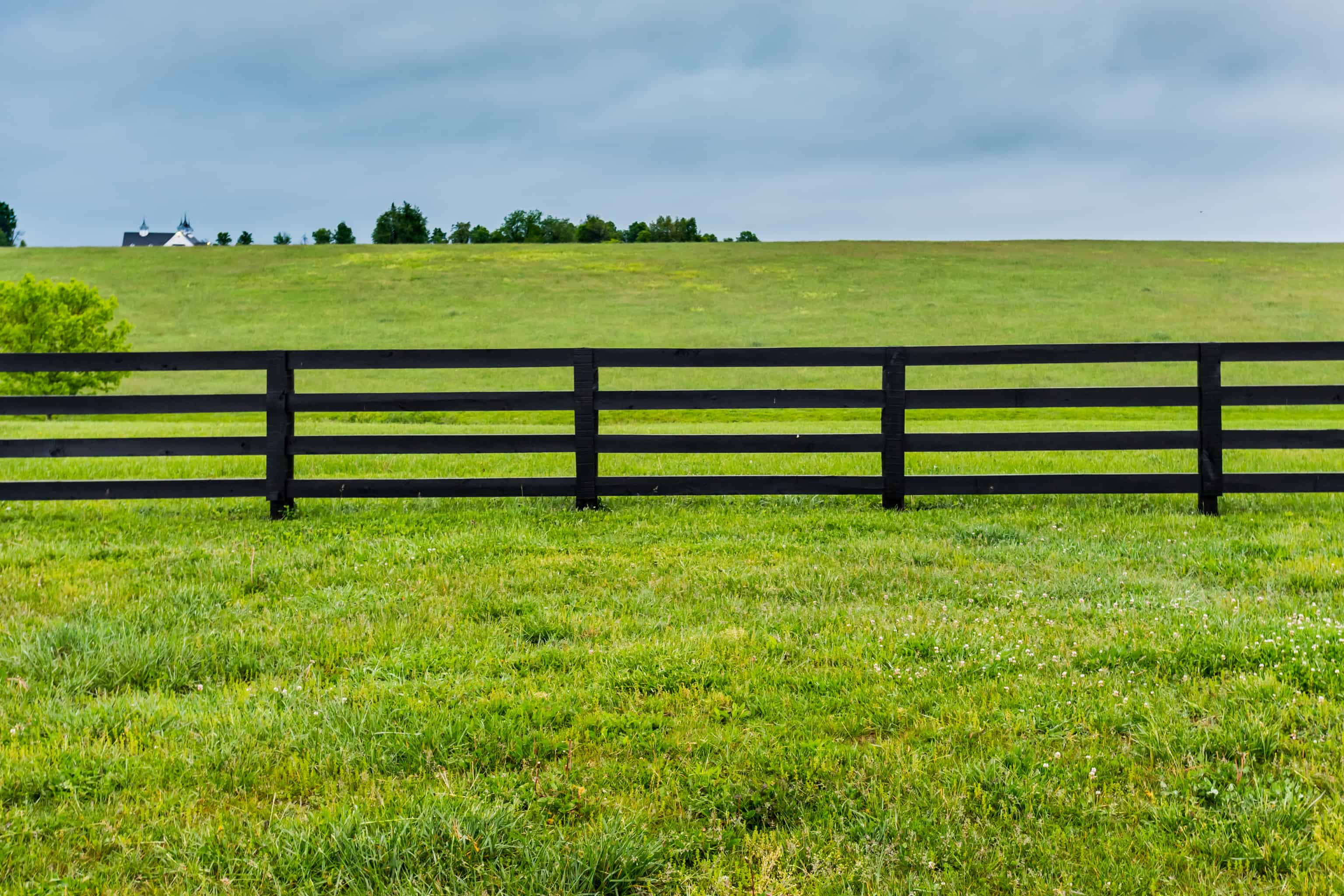 Section of Farm Fence and Pasture